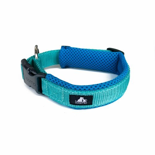 Collar Sport NEW mint collection