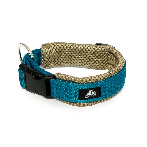 Collar Sport FALL COLLECTION 2021